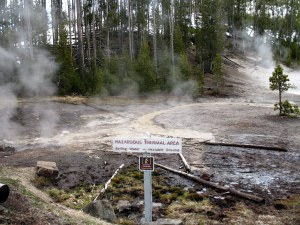 Most of the hot springs near the road had signs like this (Hazardous Thermal Area).