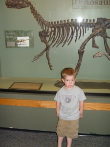 Ok, this part's good. First the Romgi takes a picture of Brandon in front of the dinosaur...